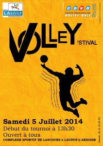 volley'stival 2014
